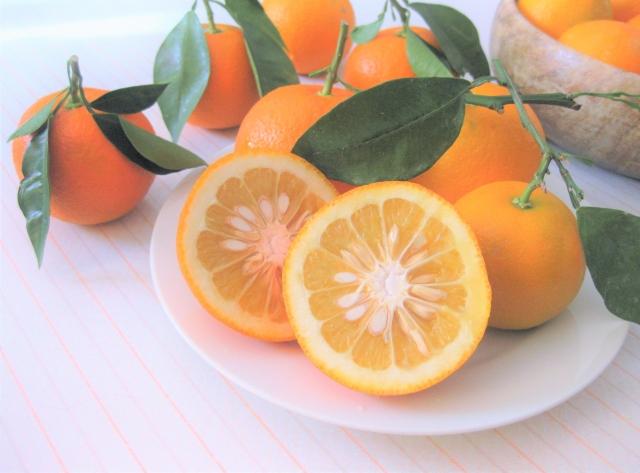 ネロリとも呼ばれます。リナロールが主成分で鎮痛、保湿、抗炎症、抗ウイルス作用を付与し、精油としても香りが好まれるものです。